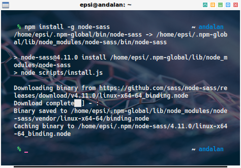 npm: install node-sass