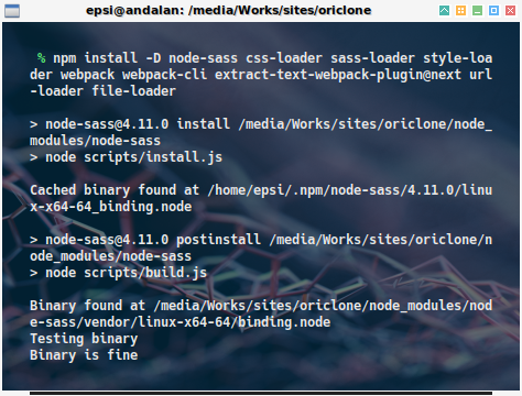 npm: install webpack: top