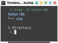 Bulma: Directory Preparation