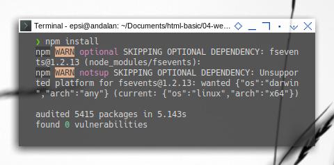 Webpack: Prepare: NPM Install