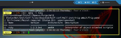 Using dpkg to check Ruby Installation