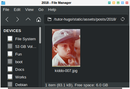 Hugo Content: Image Directory