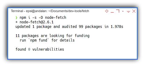 Node Fetch: NPM Install