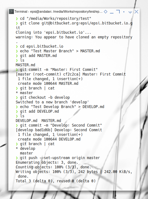 Bitbucket: Prepare Both Branches in Bitbucket