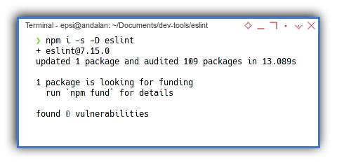 Eslint: NPM Install