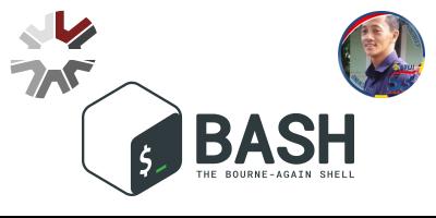 Telegram Bot - BASH CLI
